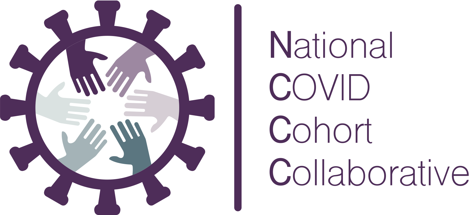 National COVID Cohort Collaborative (N3C)