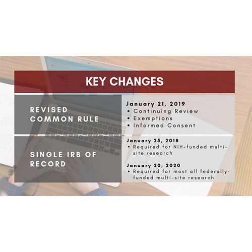 A summary of the key changes as a result of the revised common rule.