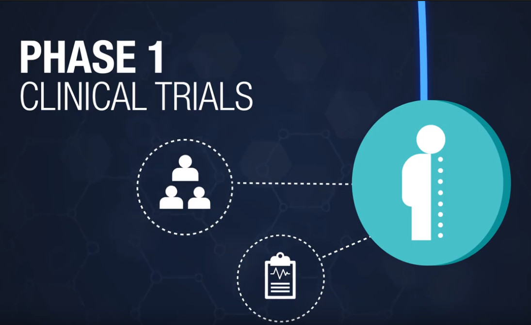 Phase 1 clinical trials infographic showing that this stage requires fewer volunteers and examines safety.