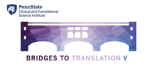 Bridges to Translation V