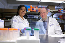 Dr. Chandrika Gowda, left, collaborates with Dr. Sinisa Dovat on research at Penn State College of Medicine.